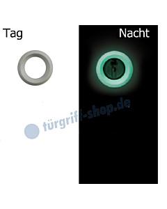 PZ Ring Nachtleuchtend grün / Tag Weiß von Südmetall