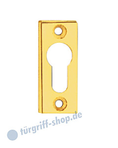 Schmalrahmen-Schlüsselrosette PZ rechteckig mit sichtbarer Verschraubung in 4 Farben von  Spitzer